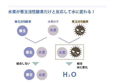 水素が悪玉活性酸素だけと反応して水に変わる